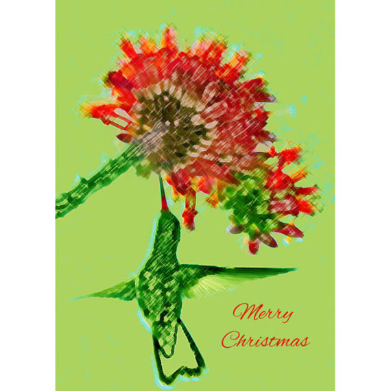 Stylized Hummingbird sips on Ocotillo Flowers withing Merry Christmas
