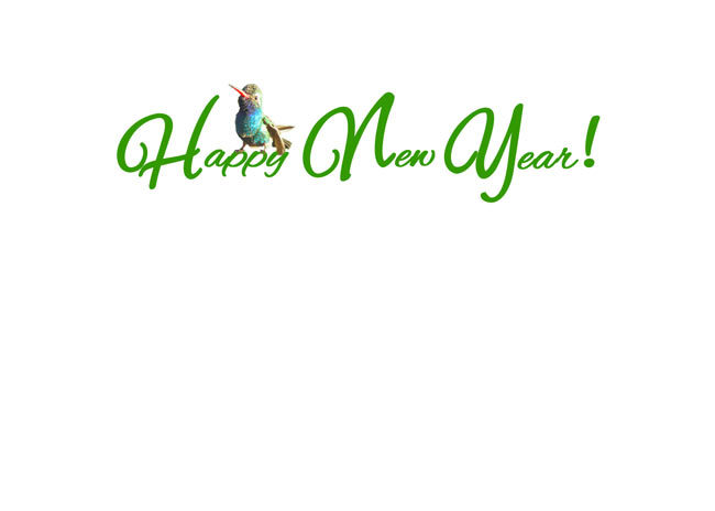 """Choose blank inside/back of your card or """"Happy New Year!"""" with a hummer sitting on the word """"Happy"""""""