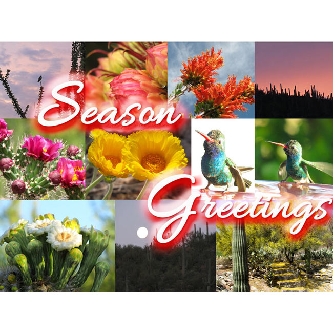 Collage of sights around Tucson to help celebrate the season
